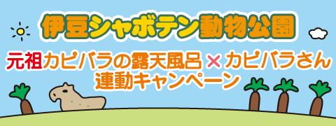シャボテン動物公園×カピバラさん